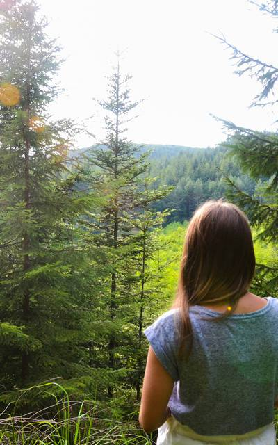 Wandern in den Vogesen - Bergführer - Wandern in Epinal - Weg in Epinal