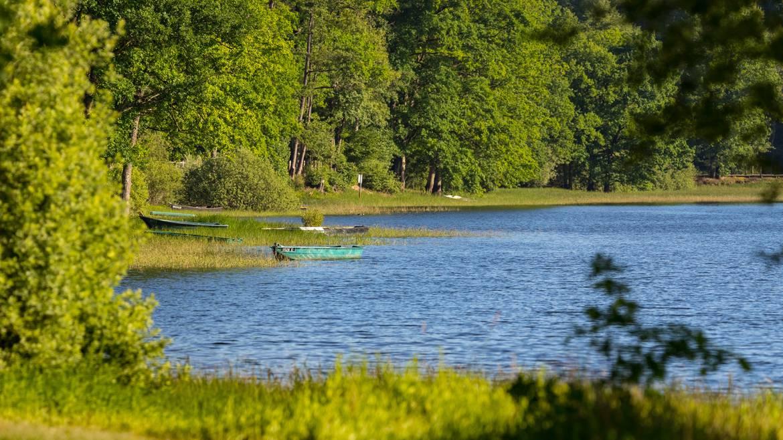 Etappe 2: 15 h 00 - Radausflug an den Lac de Bouzey